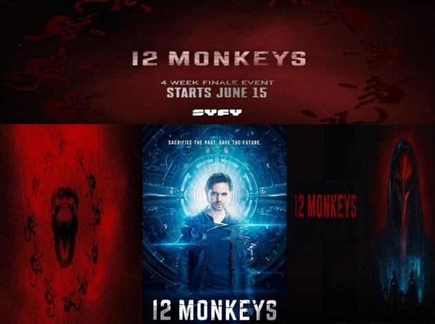 image_12_monkeys.jpg